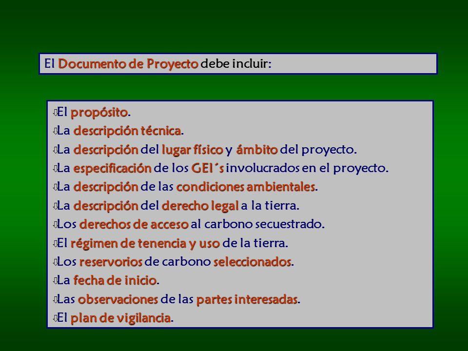 El Documento de Proyecto debe incluir: