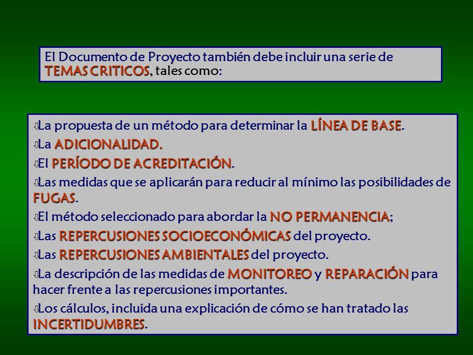 El Documento de Proyecto también debe incluir una serie de TEMAS CRITICOS, tales como: