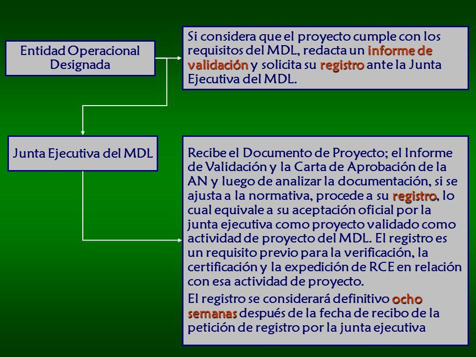 Entidad Operacional Designada Junta Ejecutiva del MDL