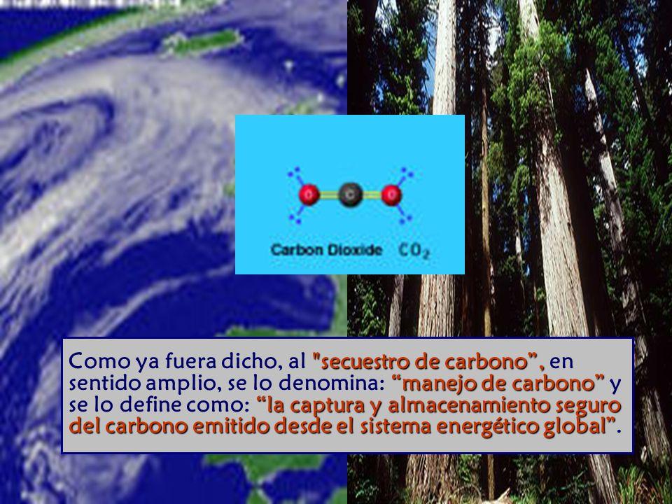 Como ya fuera dicho, al secuestro de carbono , en sentido amplio, se lo denomina: manejo de carbono y se lo define como: la captura y almacenamiento seguro del carbono emitido desde el sistema energético global .