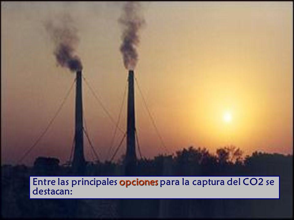 Entre las principales opciones para la captura del CO2 se destacan: