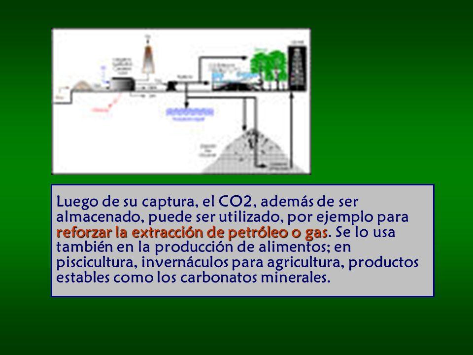 Luego de su captura, el CO2, además de ser almacenado, puede ser utilizado, por ejemplo para reforzar la extracción de petróleo o gas.