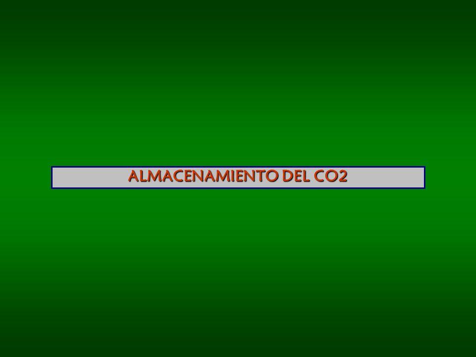 ALMACENAMIENTO DEL CO2