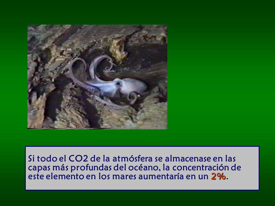 Si todo el CO2 de la atmósfera se almacenase en las capas más profundas del océano, la concentración de este elemento en los mares aumentaría en un 2%.