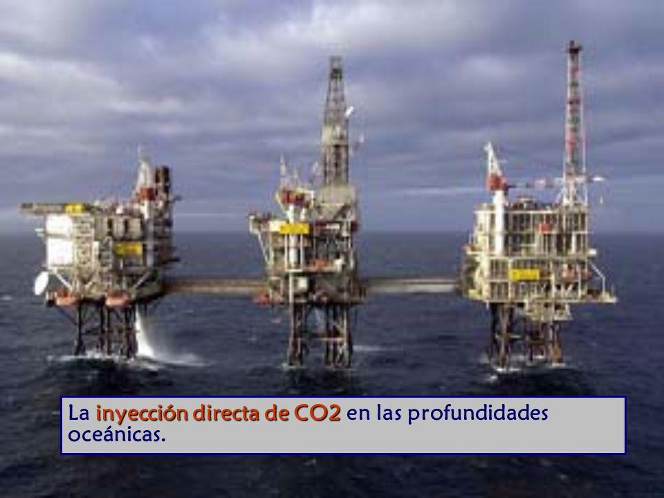 La inyección directa de CO2 en las profundidades oceánicas.
