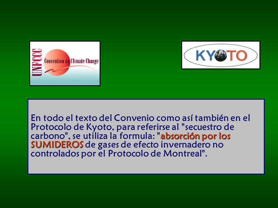 En todo el texto del Convenio como así también en el Protocolo de Kyoto, para referirse al secuestro de carbono , se utiliza la formula: absorción por los SUMIDEROS de gases de efecto invernadero no controlados por el Protocolo de Montreal .