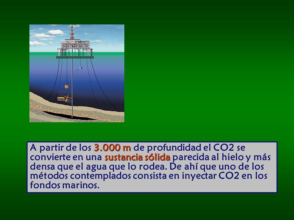 A partir de los 3.000 m de profundidad el CO2 se convierte en una sustancia sólida parecida al hielo y más densa que el agua que lo rodea.