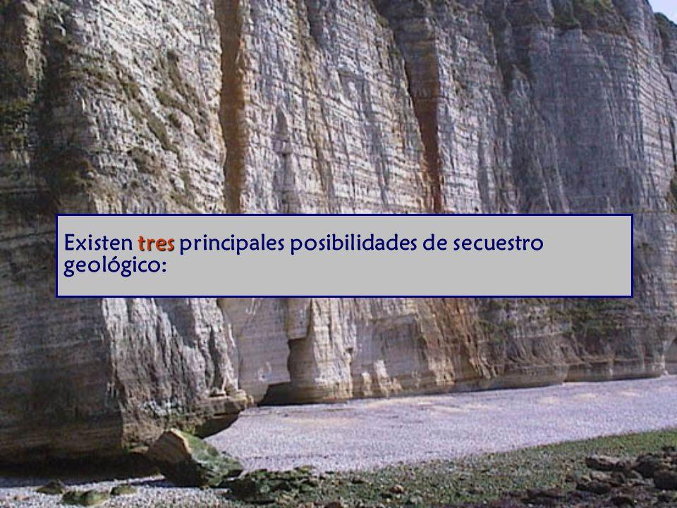 Existen tres principales posibilidades de secuestro geológico: