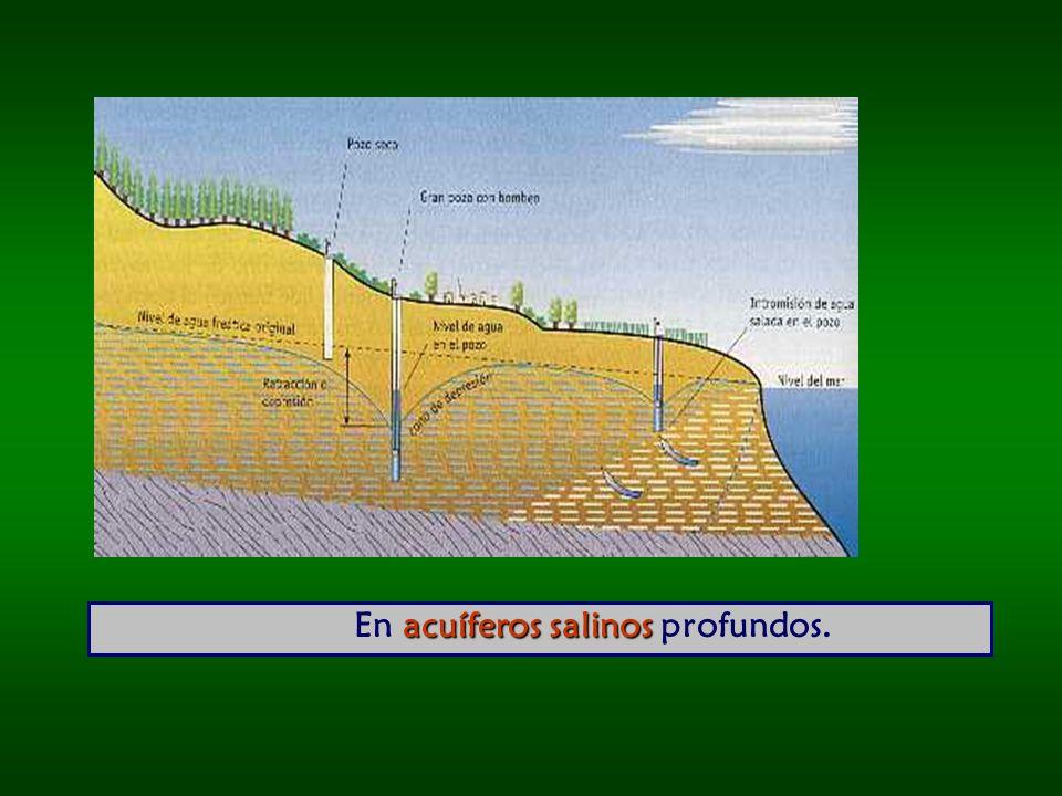 En acuíferos salinos profundos.