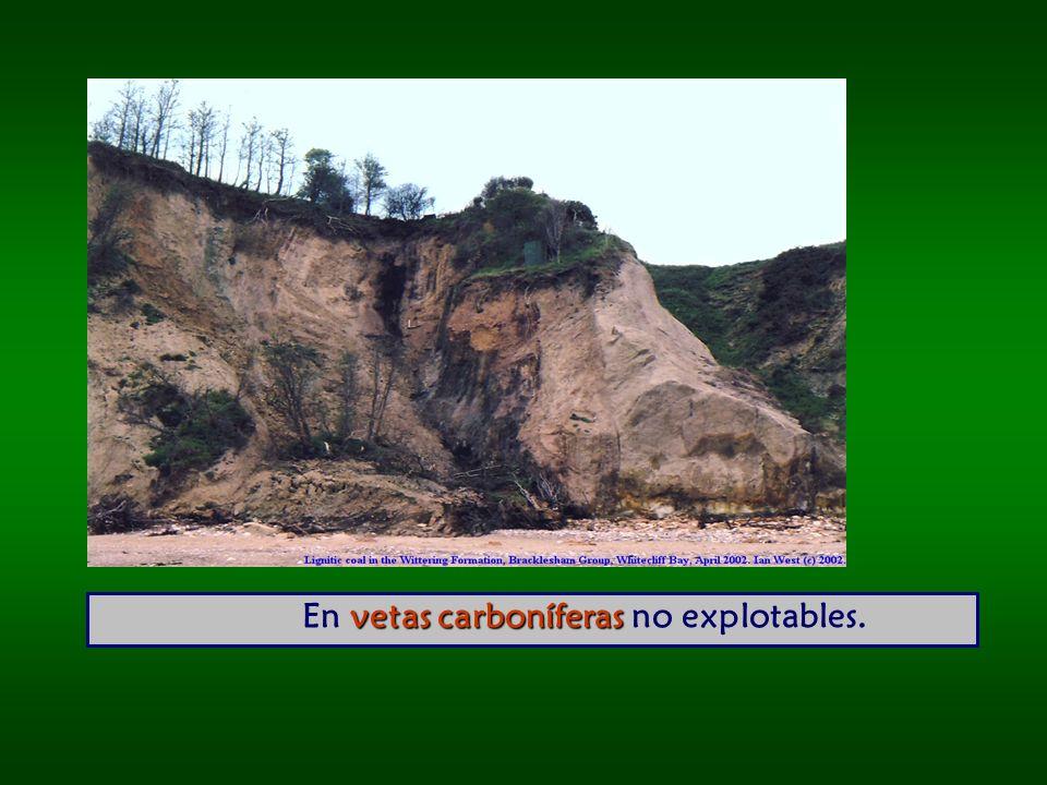 En vetas carboníferas no explotables.