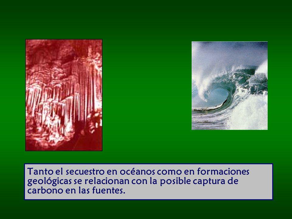 Tanto el secuestro en océanos como en formaciones geológicas se relacionan con la posible captura de carbono en las fuentes.