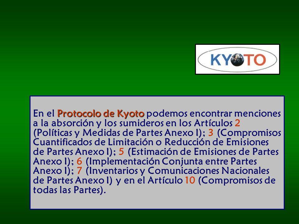 En el Protocolo de Kyoto podemos encontrar menciones a la absorción y los sumideros en los Artículos 2 (Políticas y Medidas de Partes Anexo I); 3 (Compromisos Cuantificados de Limitación o Reducción de Emisiones de Partes Anexo I); 5 (Estimación de Emisiones de Partes Anexo I); 6 (Implementación Conjunta entre Partes Anexo I); 7 (Inventarios y Comunicaciones Nacionales de Partes Anexo I) y en el Artículo 10 (Compromisos de todas las Partes).