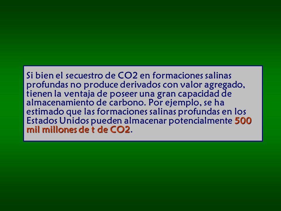 Si bien el secuestro de CO2 en formaciones salinas profundas no produce derivados con valor agregado, tienen la ventaja de poseer una gran capacidad de almacenamiento de carbono.