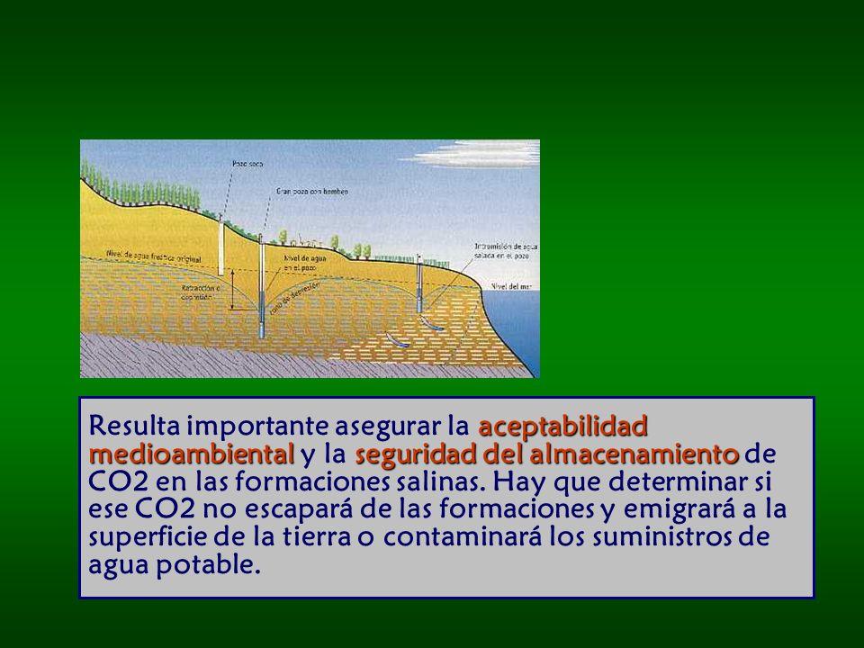 Resulta importante asegurar la aceptabilidad medioambiental y la seguridad del almacenamiento de CO2 en las formaciones salinas.