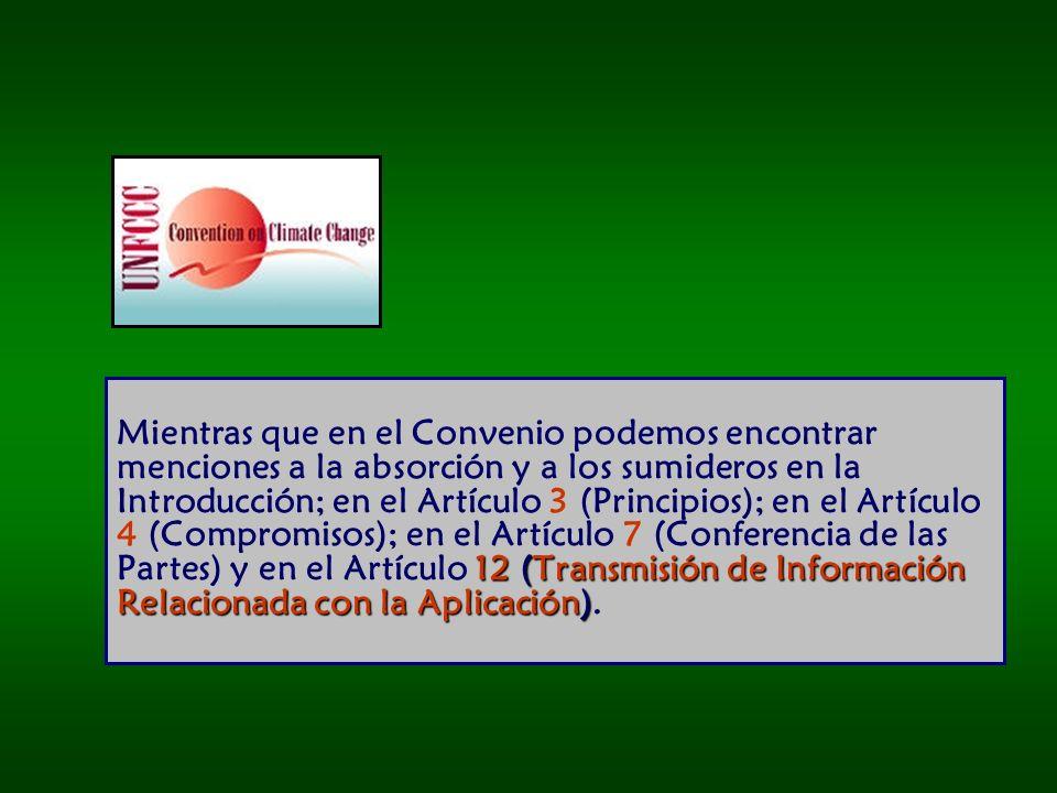 Mientras que en el Convenio podemos encontrar menciones a la absorción y a los sumideros en la Introducción; en el Artículo 3 (Principios); en el Artículo 4 (Compromisos); en el Artículo 7 (Conferencia de las Partes) y en el Artículo 12 (Transmisión de Información Relacionada con la Aplicación).