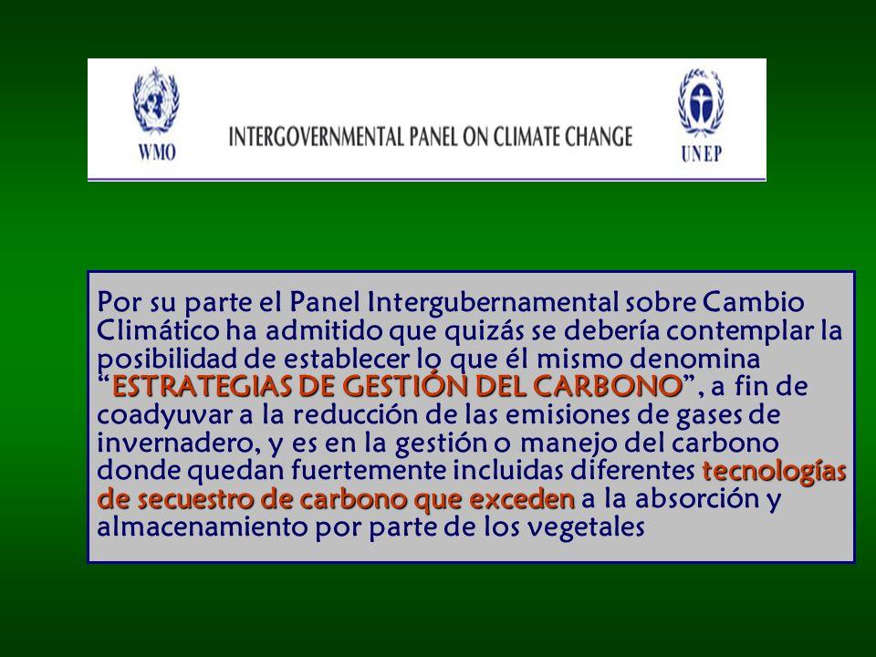 Por su parte el Panel Intergubernamental sobre Cambio Climático ha admitido que quizás se debería contemplar la posibilidad de establecer lo que él mismo denomina ESTRATEGIAS DE GESTIÓN DEL CARBONO , a fin de coadyuvar a la reducción de las emisiones de gases de invernadero, y es en la gestión o manejo del carbono donde quedan fuertemente incluidas diferentes tecnologías de secuestro de carbono que exceden a la absorción y almacenamiento por parte de los vegetales