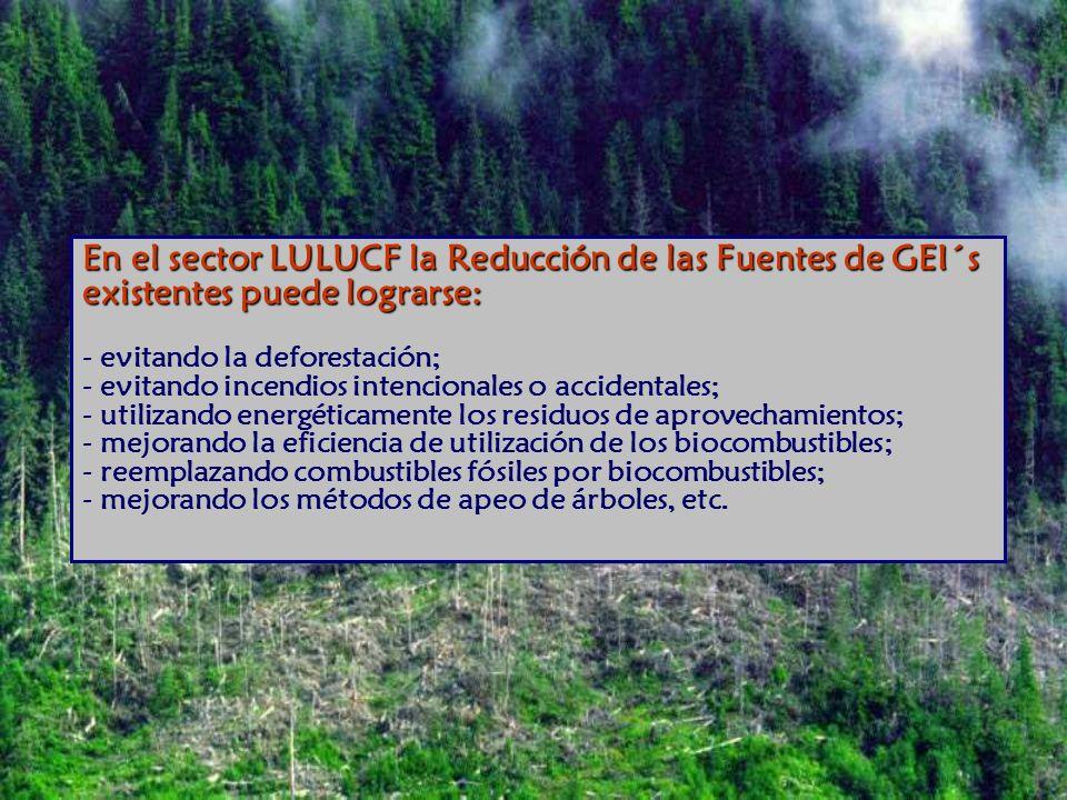 En el sector LULUCF la Reducción de las Fuentes de GEI´s existentes puede lograrse: - evitando la deforestación; - evitando incendios intencionales o accidentales; - utilizando energéticamente los residuos de aprovechamientos; - mejorando la eficiencia de utilización de los biocombustibles; - reemplazando combustibles fósiles por biocombustibles; - mejorando los métodos de apeo de árboles, etc.