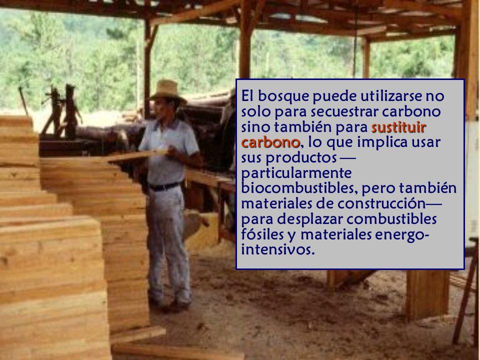 El bosque puede utilizarse no solo para secuestrar carbono sino también para sustituir carbono, lo que implica usar sus productos —particularmente biocombustibles, pero también materiales de construcción— para desplazar combustibles fósiles y materiales energo-intensivos.