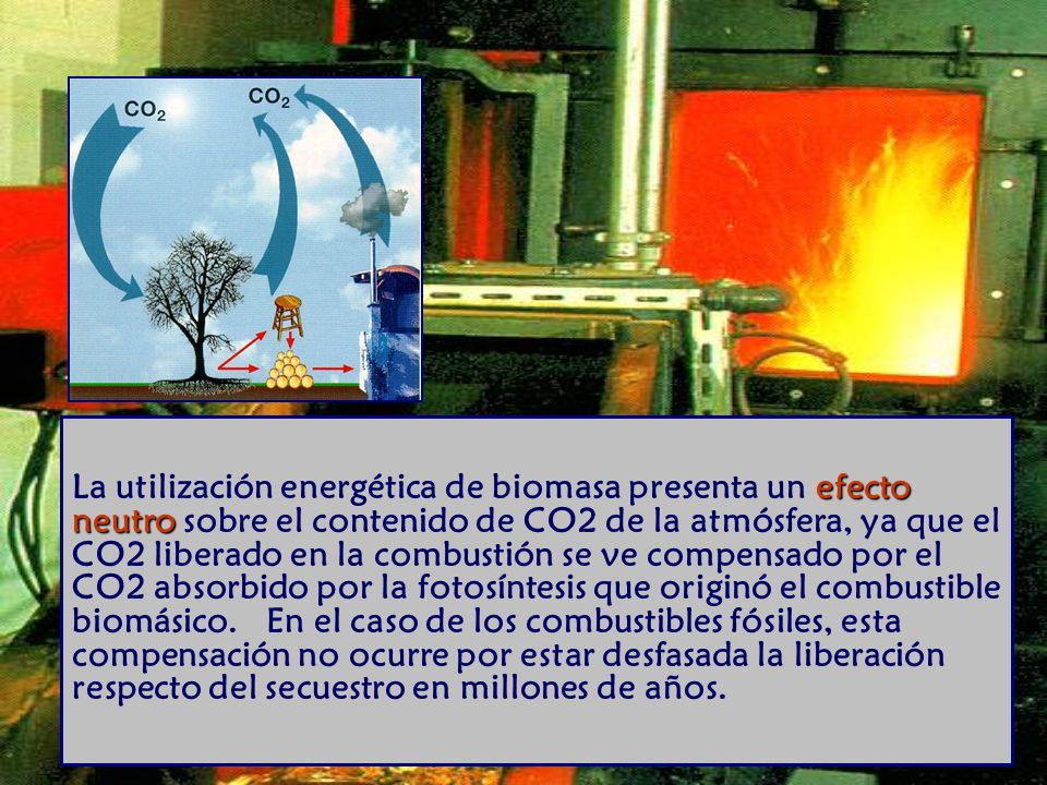 La utilización energética de biomasa presenta un efecto neutro sobre el contenido de CO2 de la atmósfera, ya que el CO2 liberado en la combustión se ve compensado por el CO2 absorbido por la fotosíntesis que originó el combustible biomásico. En el caso de los combustibles fósiles, esta compensación no ocurre por estar desfasada la liberación respecto del secuestro en millones de años.