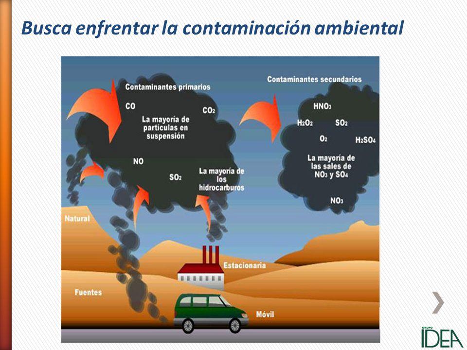 Busca enfrentar la contaminación ambiental