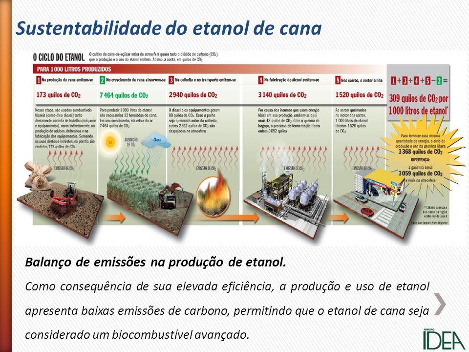 Sustentabilidade do etanol de cana