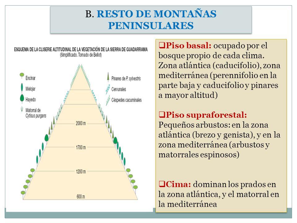 B. RESTO DE MONTAÑAS PENINSULARES