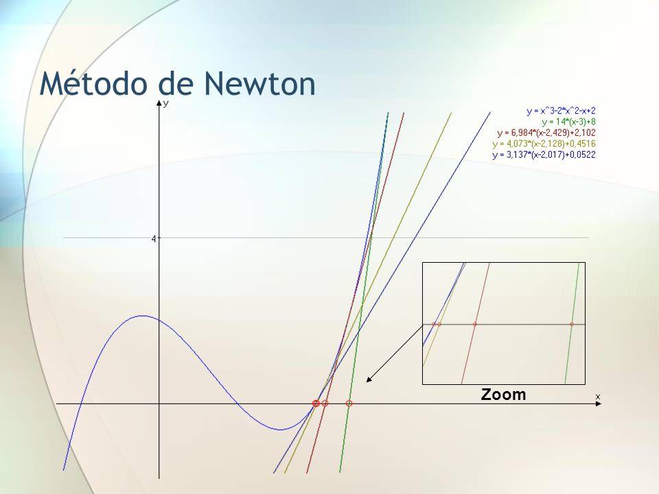 Método de Newton Se dice que el método convergió Zoom