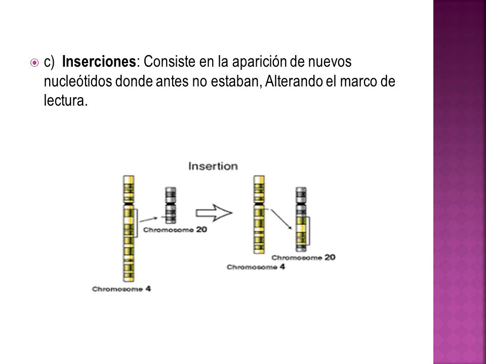 c) Inserciones: Consiste en la aparición de nuevos nucleótidos donde antes no estaban, Alterando el marco de lectura.