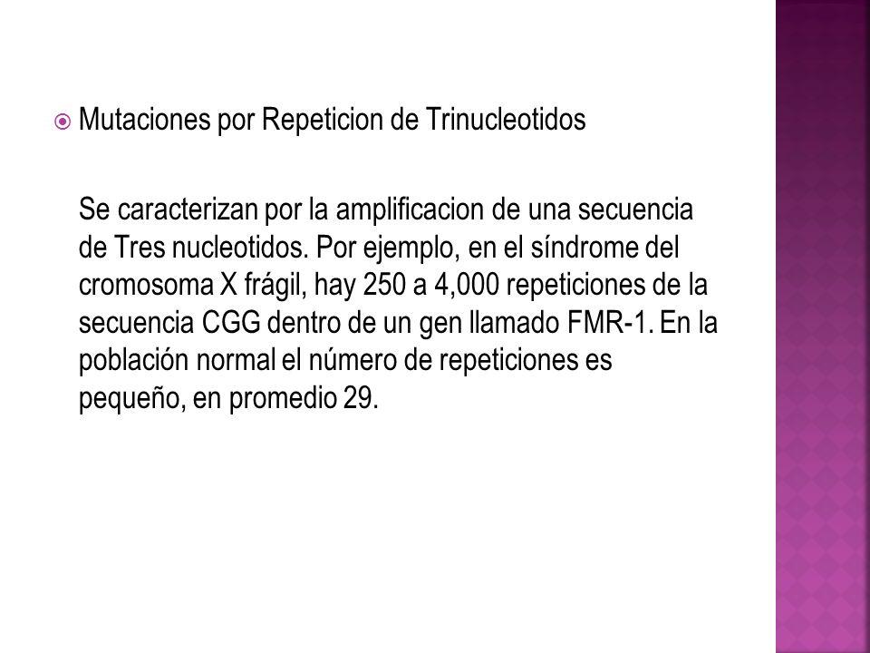 Mutaciones por Repeticion de Trinucleotidos