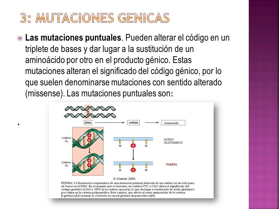 3: MUTACIONES GENICAS
