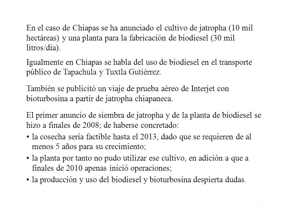 En el caso de Chiapas se ha anunciado el cultivo de jatropha (10 mil hectáreas) y una planta para la fabricación de biodiesel (30 mil litros/día).
