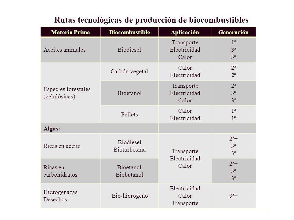 Rutas tecnológicas de producción de biocombustibles