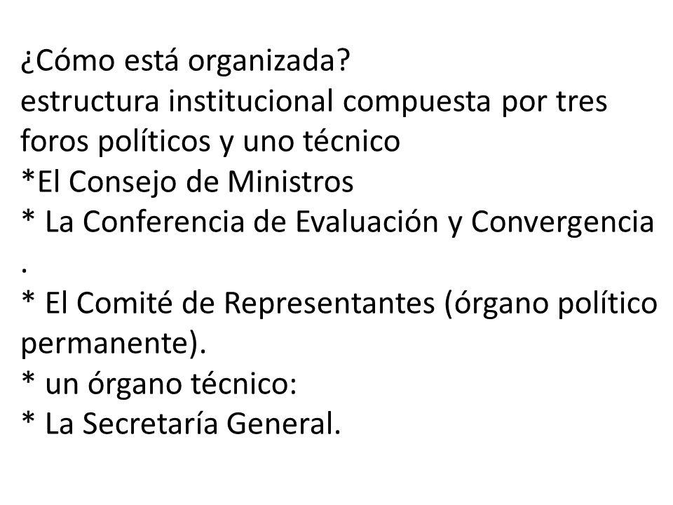 ¿Cómo está organizada.