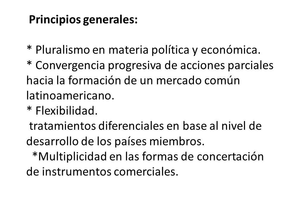 Principios generales:. Pluralismo en materia política y económica