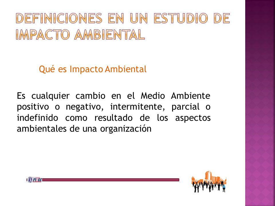 Definiciones en UN ESTUDIO DE Impacto Ambiental