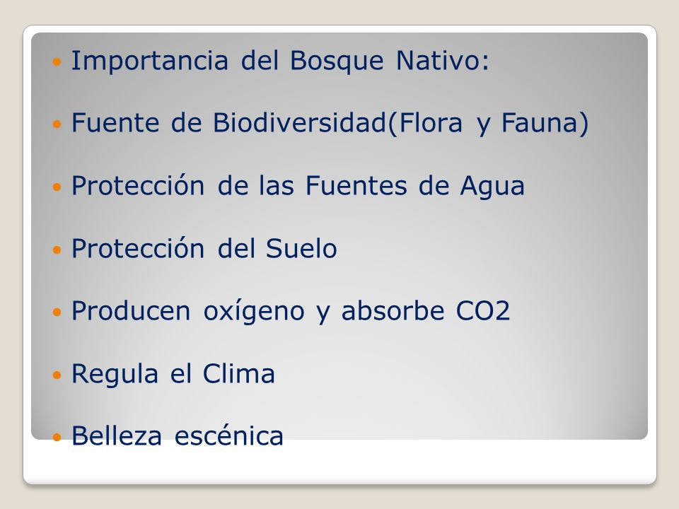 Importancia del Bosque Nativo: