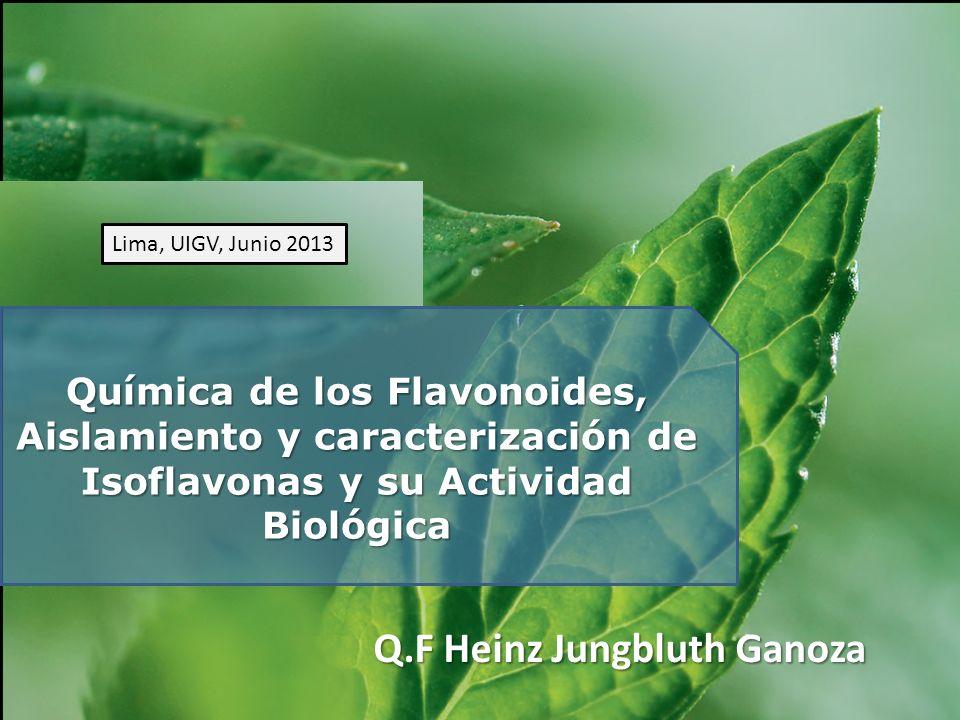 Q.F Heinz Jungbluth Ganoza