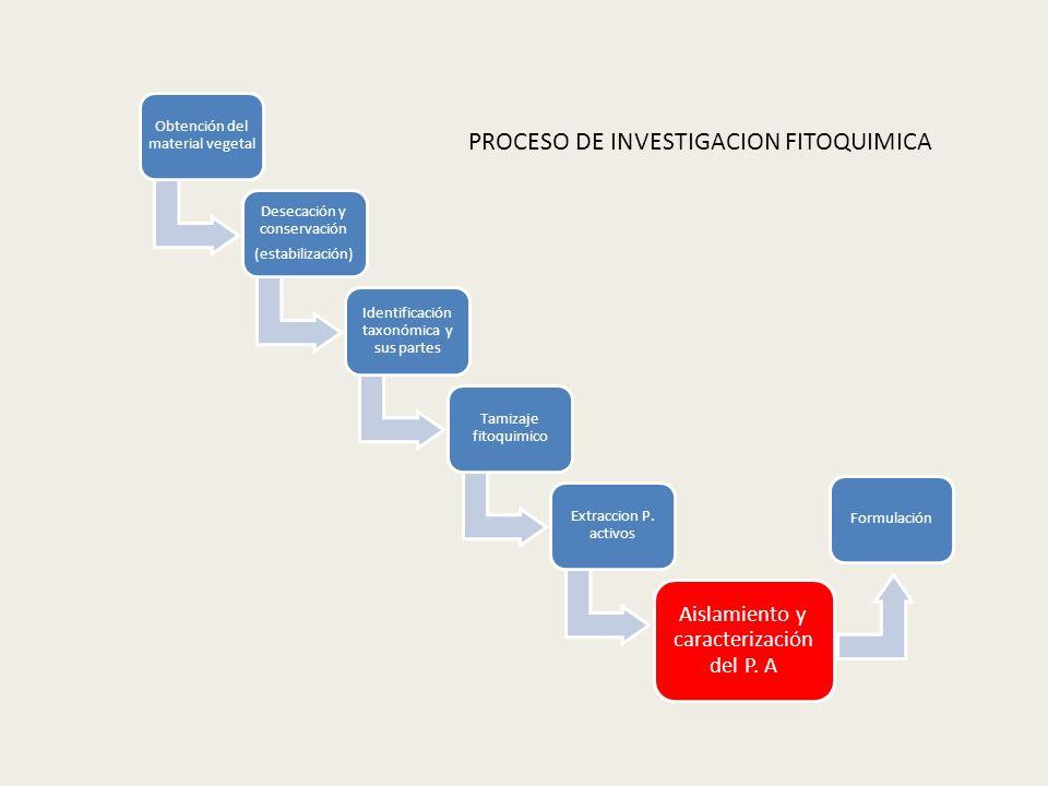PROCESO DE INVESTIGACION FITOQUIMICA