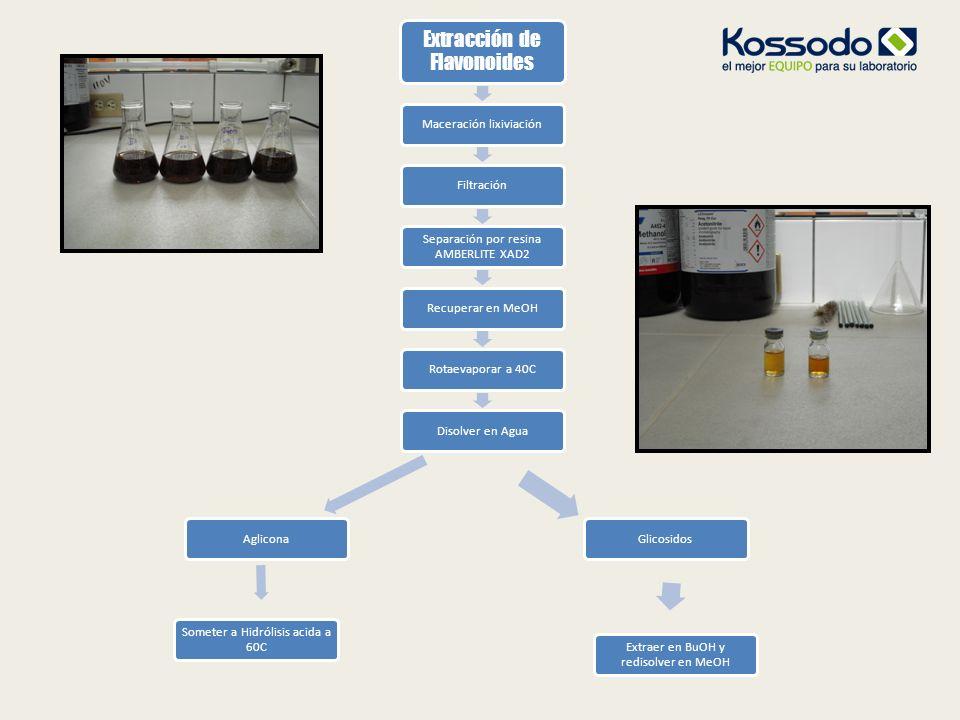 Extracción de Flavonoides