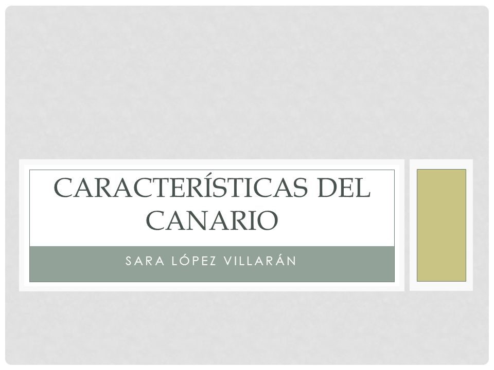 Características del canario