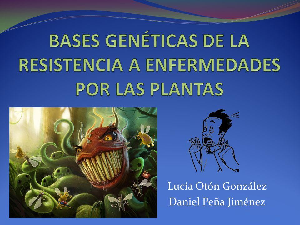 BASES GENÉTICAS DE LA RESISTENCIA A ENFERMEDADES POR LAS PLANTAS