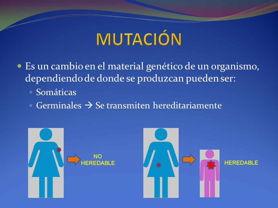 MUTACIÓNEs un cambio en el material genético de un organismo, dependiendo de donde se produzcan pueden ser: