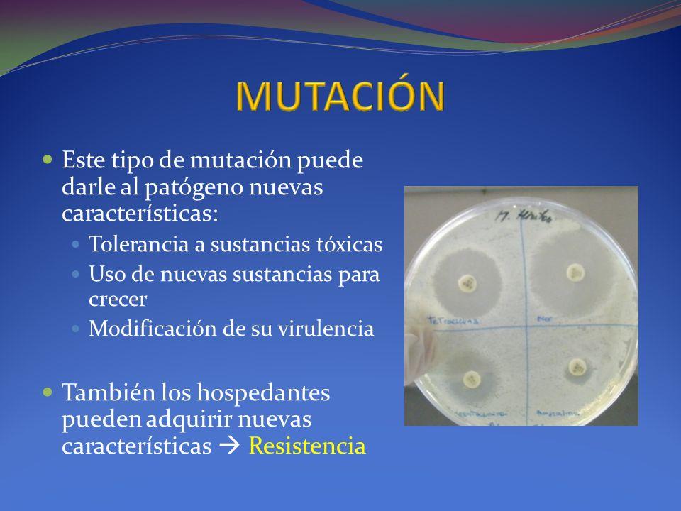 MUTACIÓN Este tipo de mutación puede darle al patógeno nuevas características: Tolerancia a sustancias tóxicas.