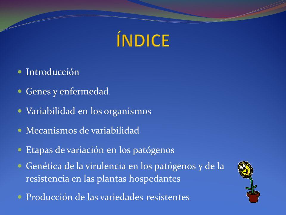 ÍNDICE Introducción Genes y enfermedad Variabilidad en los organismos