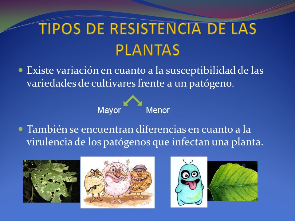 TIPOS DE RESISTENCIA DE LAS PLANTAS