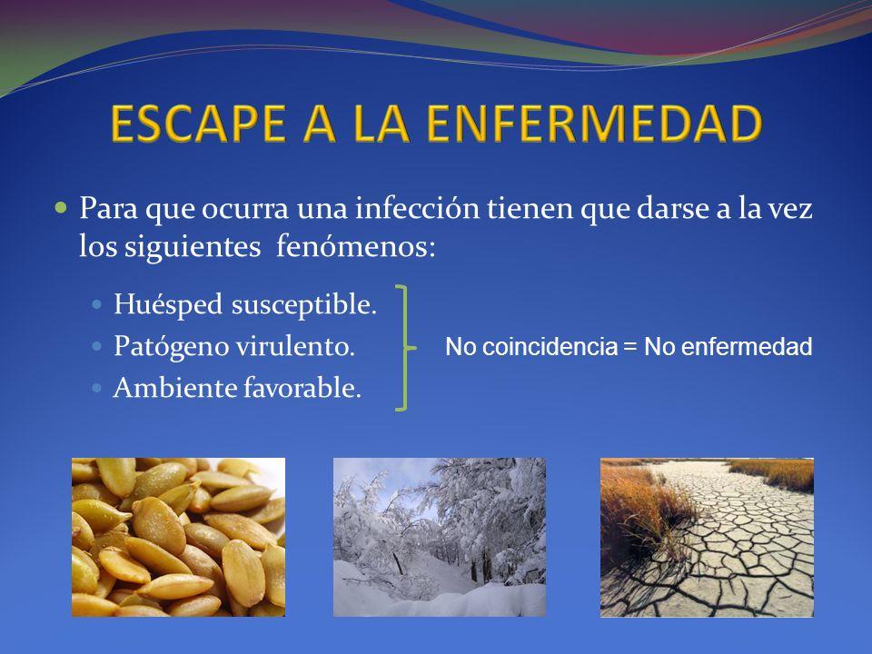 ESCAPE A LA ENFERMEDADPara que ocurra una infección tienen que darse a la vez los siguientes fenómenos: