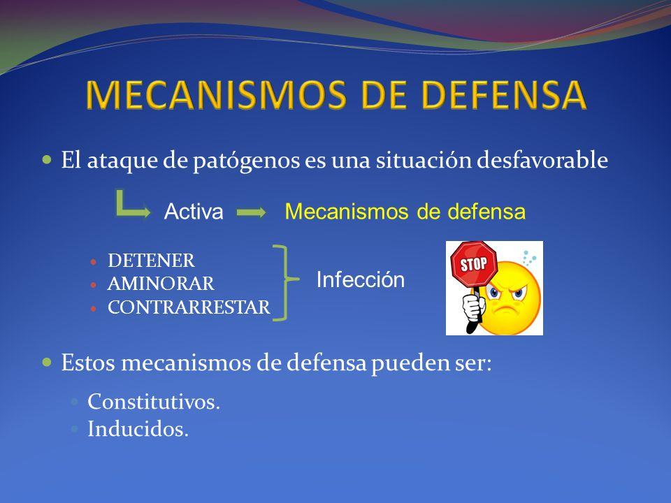 MECANISMOS DE DEFENSA El ataque de patógenos es una situación desfavorable. DETENER. AMINORAR. CONTRARRESTAR.