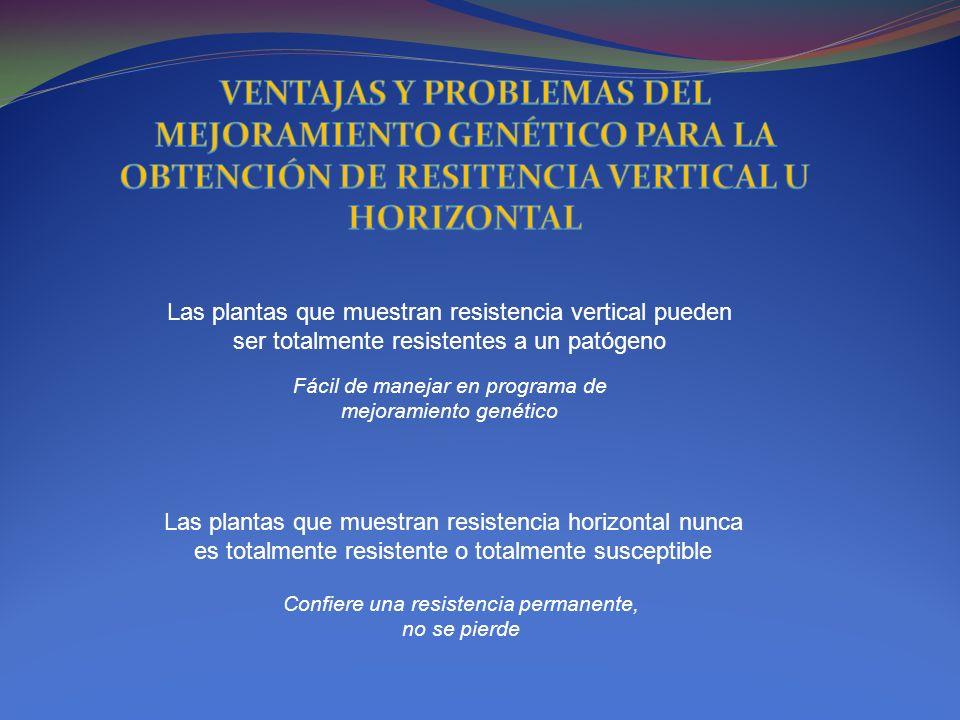 VENTAJAS Y PROBLEMAS DEL MEJORAMIENTO GENÉTICO PARA LA OBTENCIÓN DE RESITENCIA VERTICAL U HORIZONTAL