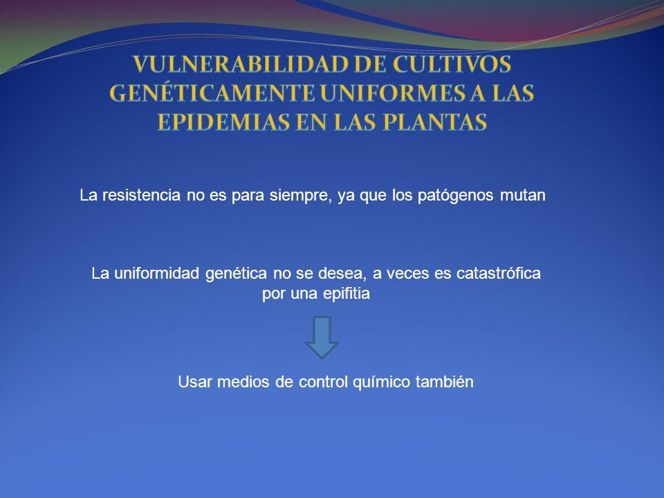 VULNERABILIDAD DE CULTIVOS GENÉTICAMENTE UNIFORMES A LAS EPIDEMIAS EN LAS PLANTAS