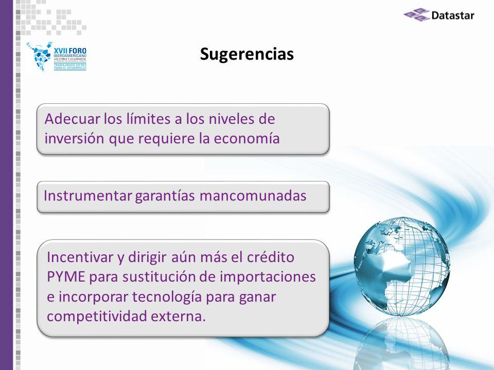 Sugerencias Adecuar los límites a los niveles de inversión que requiere la economía. Instrumentar garantías mancomunadas.
